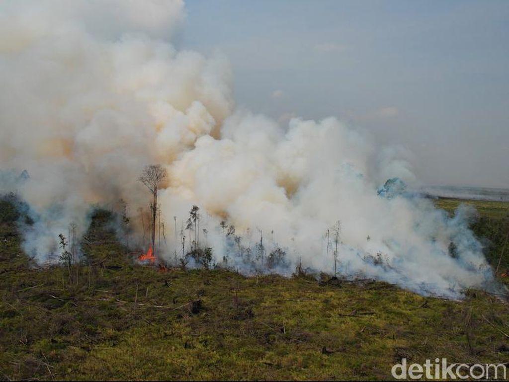 Jokowi Minta TNI dan Polri Batasi Orang Bakar Lahan Atasi Kabut Asap