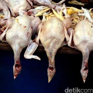 Daging Ayam Segar Naik Rp 5.000 Jadi Rp 30.000/Kg