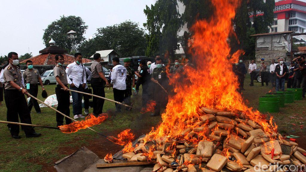 Ganja 158 Kg Dibalut Kue Kering Ditemukan di Kargo Bandara Kualanamu
