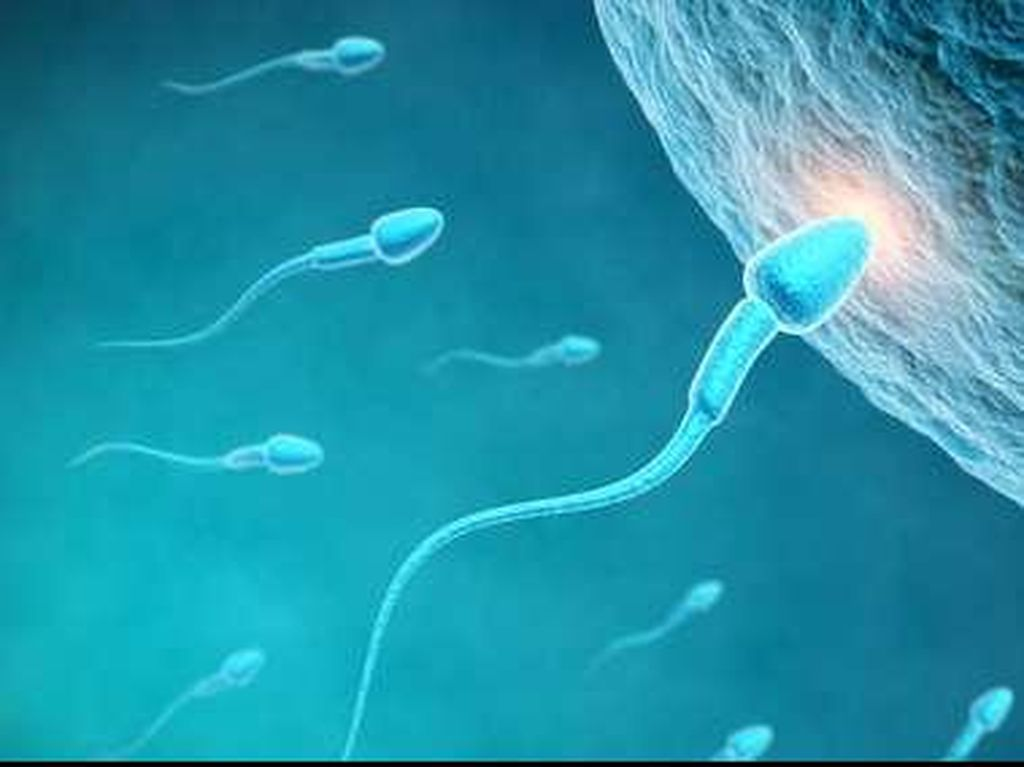 Tak Cuma Rokok dan Alkohol, Ganja Juga Bikin Jumlah Sperma Drop