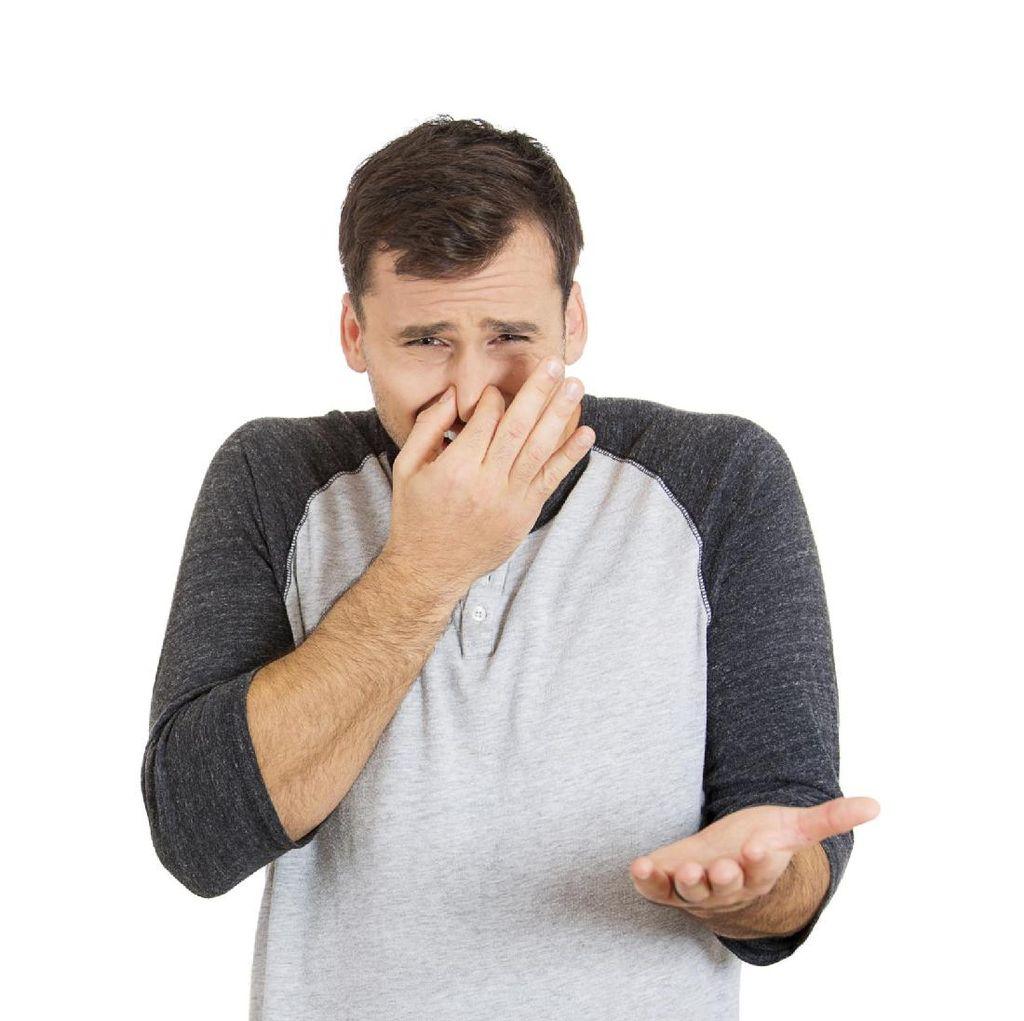 Hasilkan Bau Tak Sedap, Tumbuhan Herba Ginkgo Jadi Masalah di Korsel