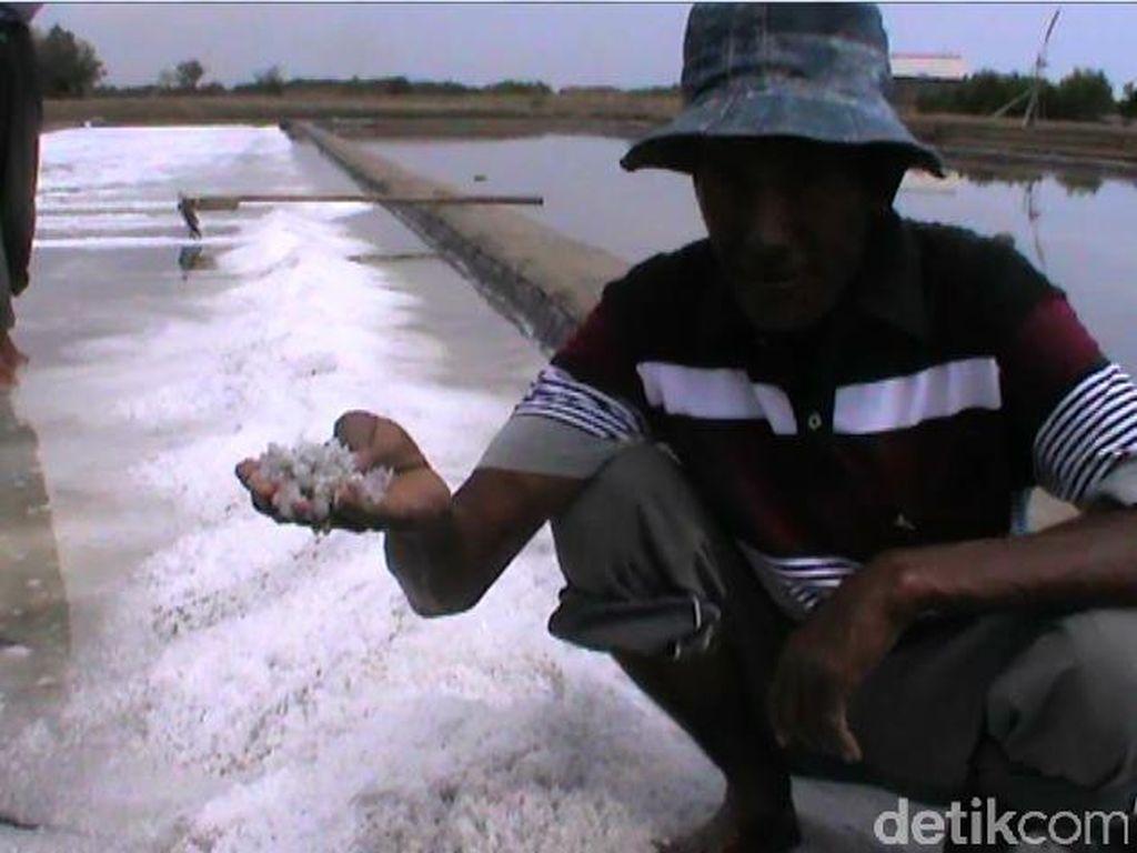 Harga Garam Anjlok Imbas Abu Vulkanik Raung di Probolinggo