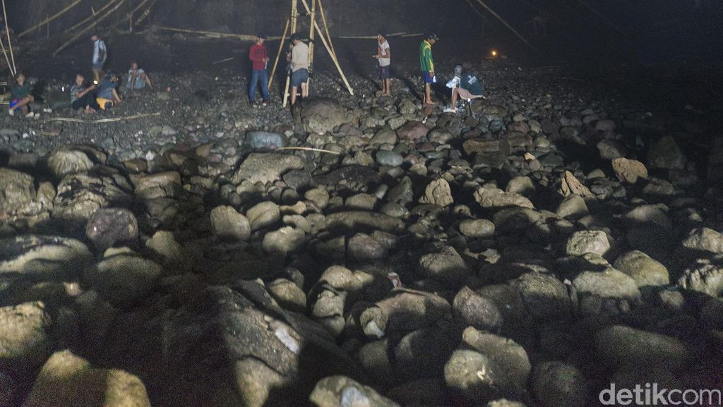 Melihat Aksi Pemetik Sarang Walet Bertaruh Nyawa di Goa Laut Selatan