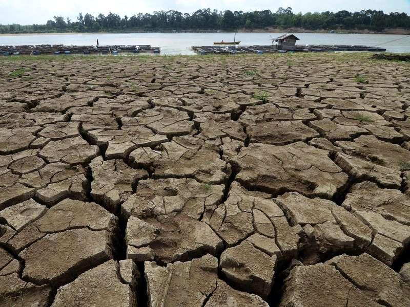 Panen Hujan, Solusi Kekeringan di Musim Kemarau dan Kebanjiran di Musim Hujan