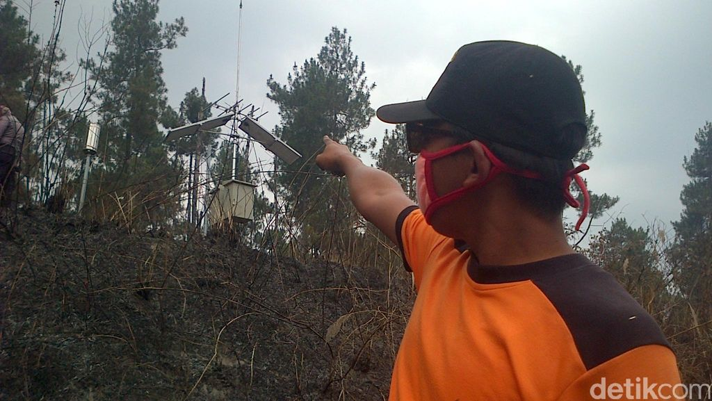 6,6 Ha Hutan Merapi Ludes Diterjang Api, Alat Pemantau Hujan Ikut Rusak
