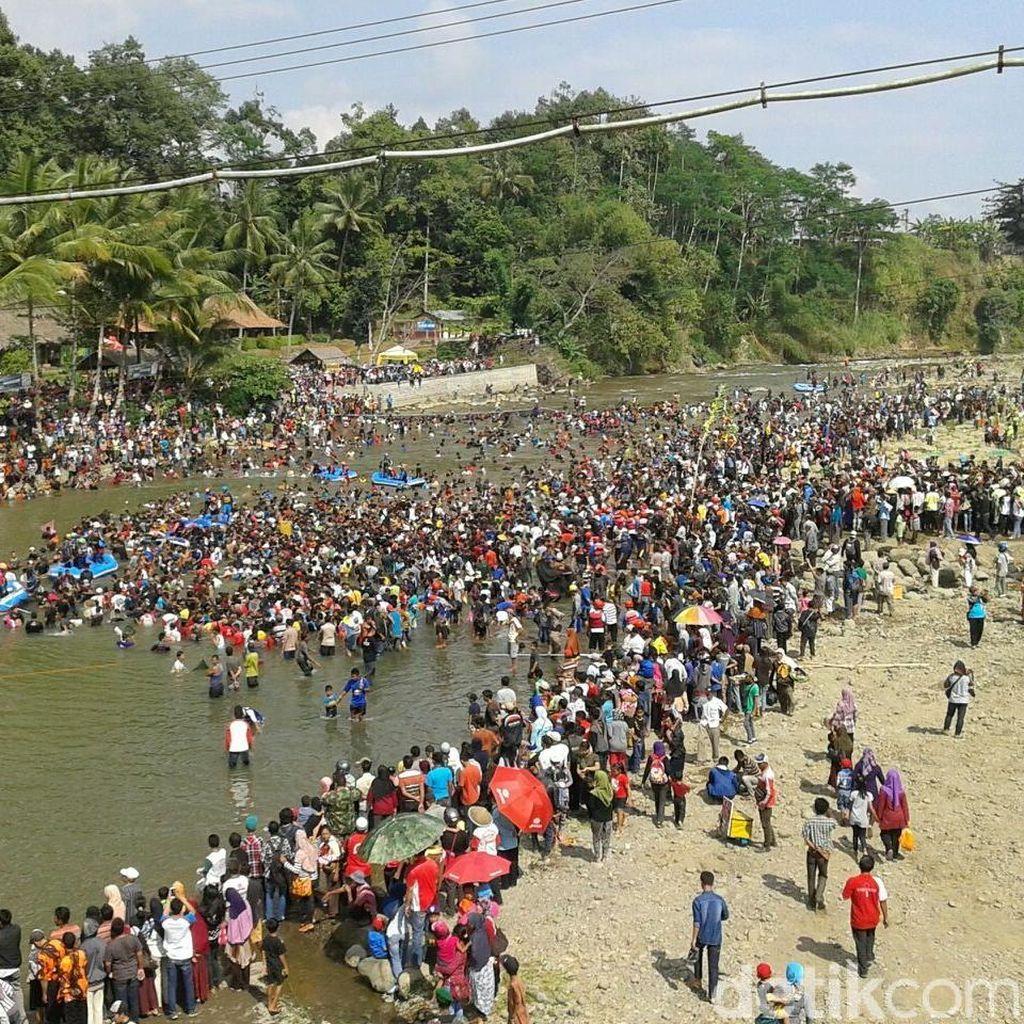 Serunya Menangkap Ribuan Ikan di Pesta Parak Iwak Banjarnegara