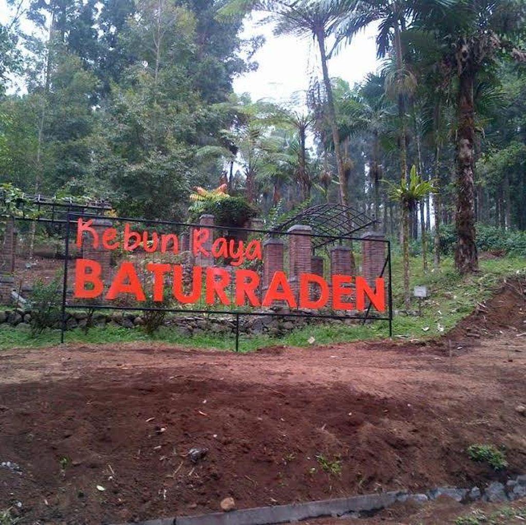Menengok Kebun Raya Baturraden yang Akan Diresmikan November Mendatang
