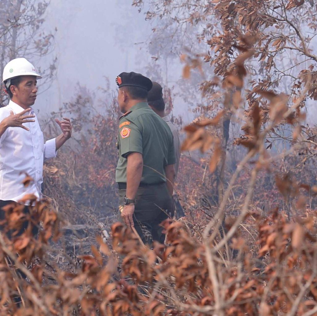 Jokowi Akan Sampaikan Masalah Lahan Gambut di Pertemuan COP21 di Paris
