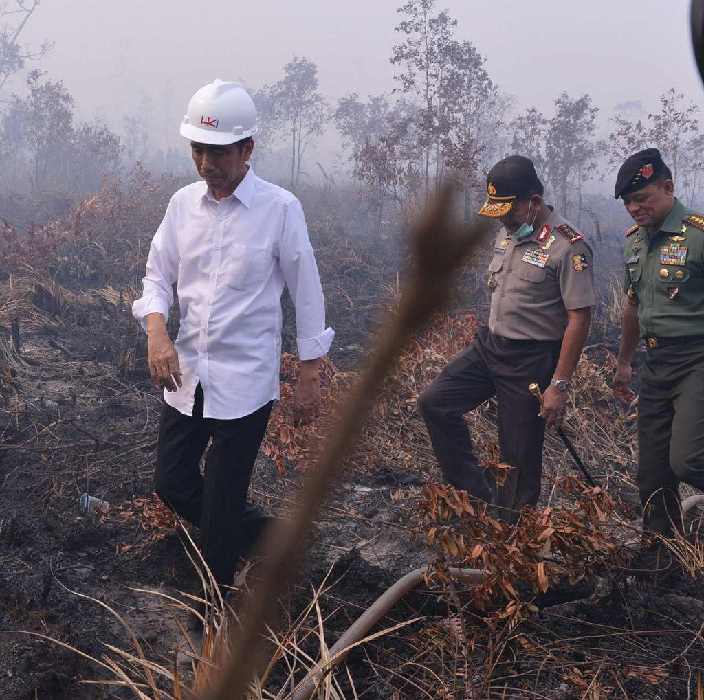 Lewat Jalur Darat dari Padang ke Riau, Jokowi Pantau Pelayanan Kesehatan