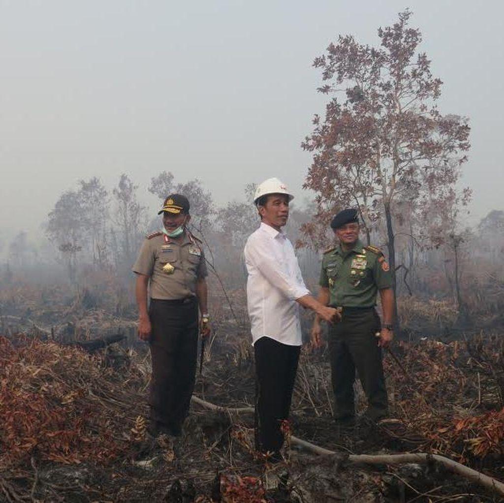 Tanggapi Bencana Asap, Jokowi Akan Datangi Riau dan Jambi