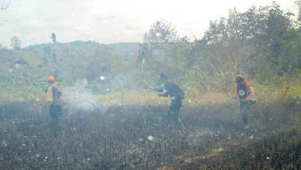 Ini Lokasi Kebakaran Hutan Tempat Pak Dulman Ambruk dan Tewas