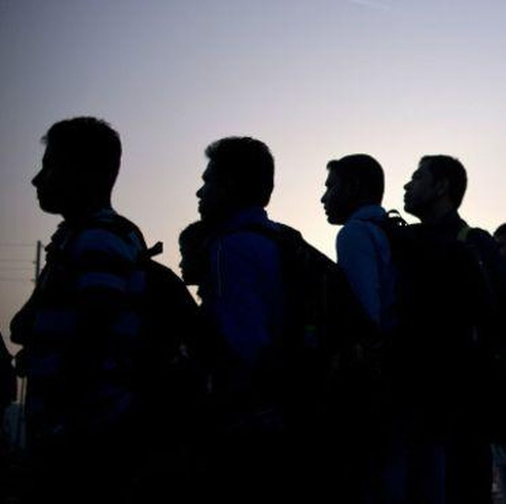Soal Pengungsi, PM Rusia Sebut Kebijakan Jerman Bodoh dan Gagal Total