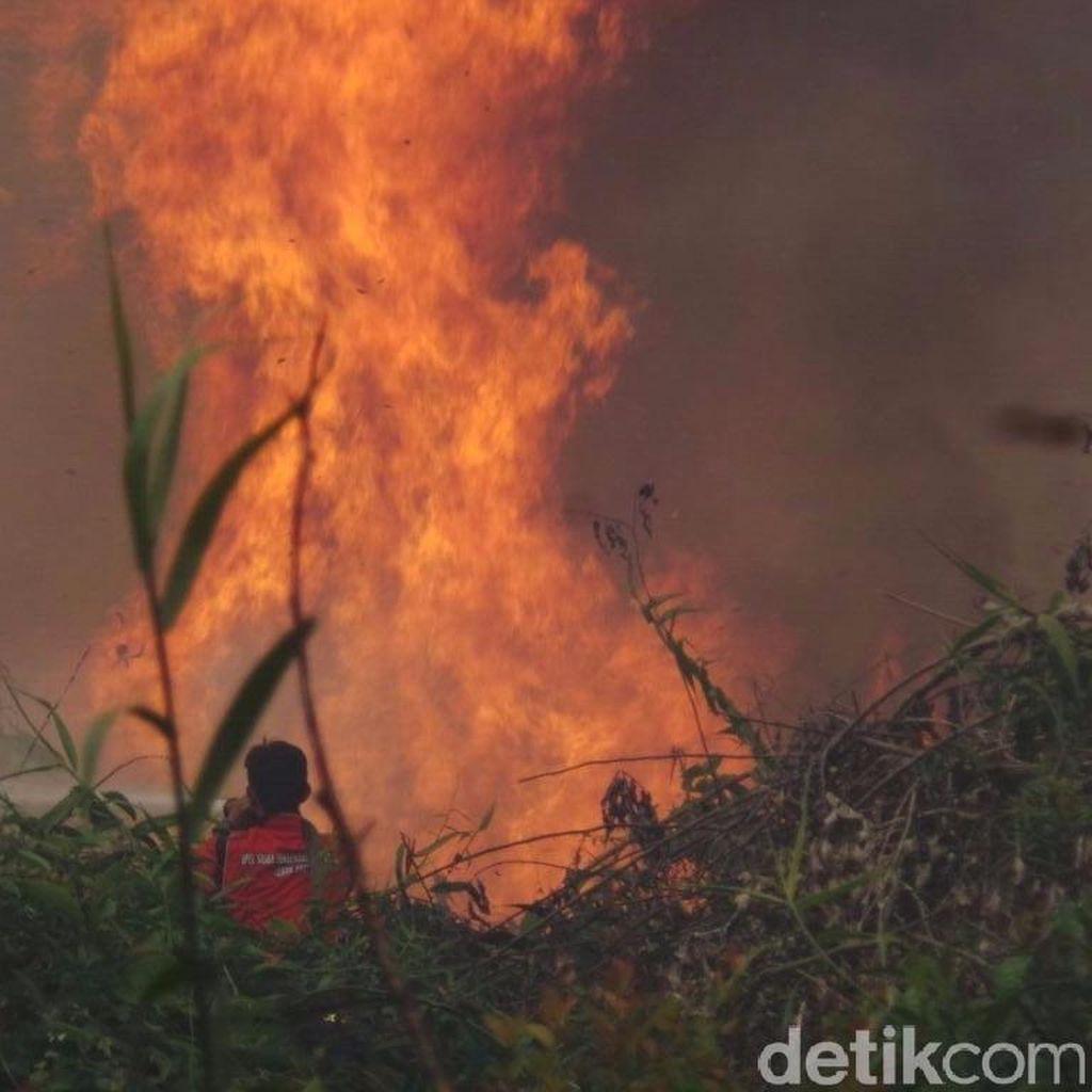 Dalam 2 Hari, Kebakaran Lahan Malah Bertambah di Kalimantan Timur