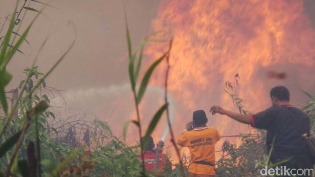 Adakah Perusahaan Besar Dibidik Jadi Tersangka Pembakaran Hutan?