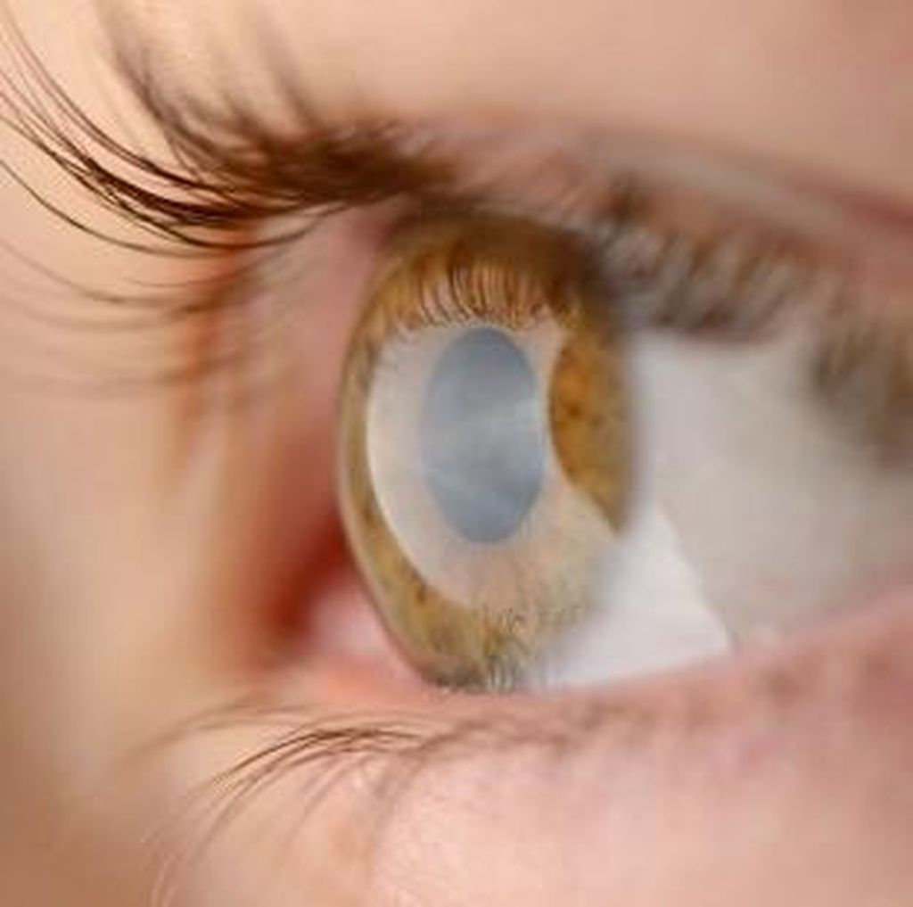 Ini Alasan Mengapa Melihat Pemandangan Hijau Baik untuk Mata