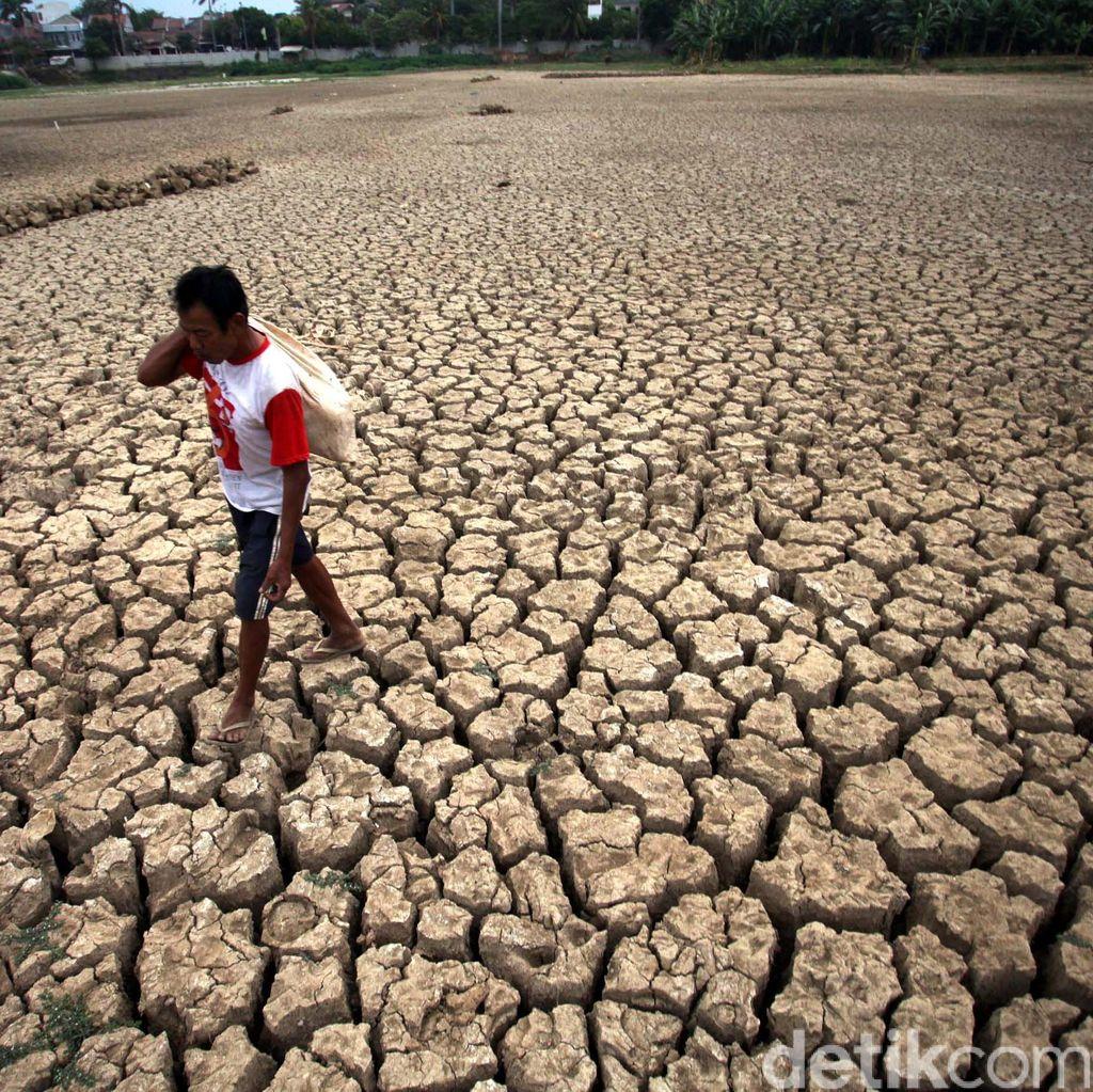 Kekeringan di Lamongan Meluas, 10 Kecamatan Krisis Air Bersih
