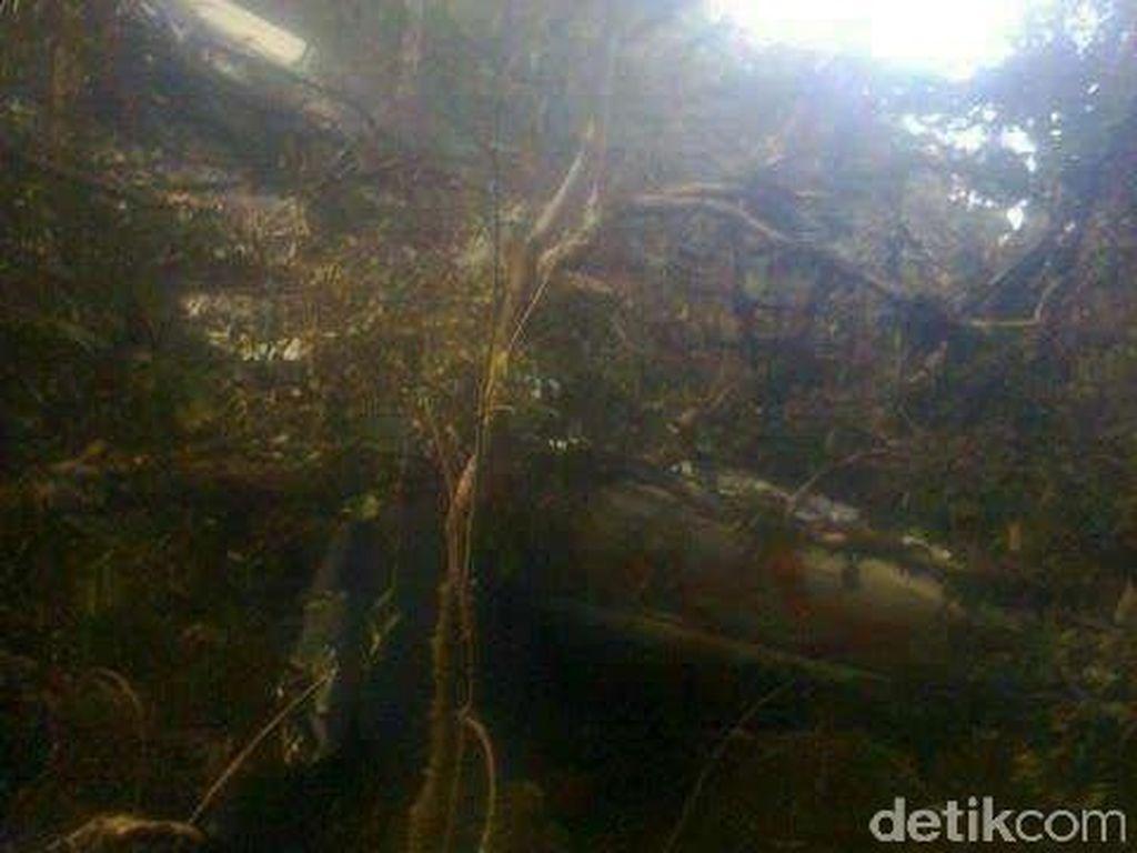 Basarnas Siapkan Evakuasi Korban Aviastar Lewat Jalur Darat dan Udara