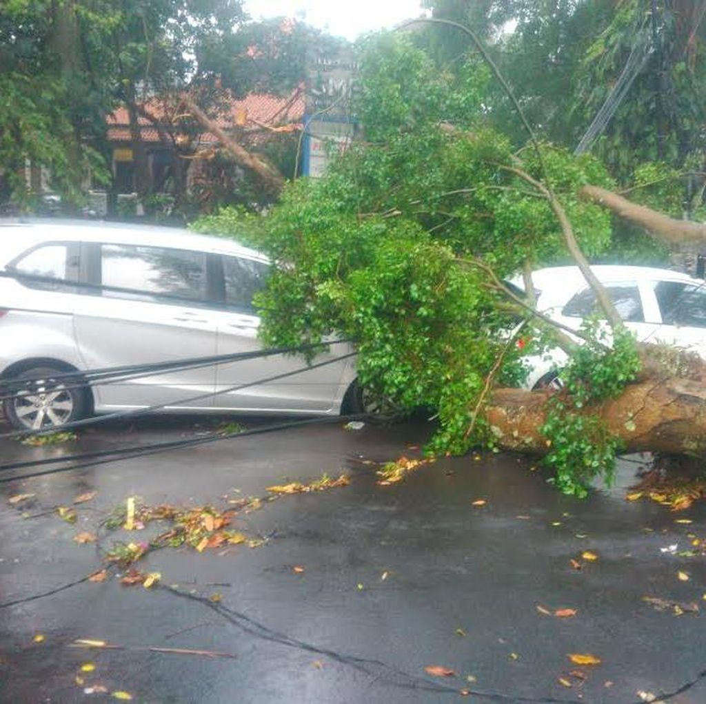 6 Mobil yang Tertimpa Pohon Tumbang di Depan ITB Tak Diberi Ganti