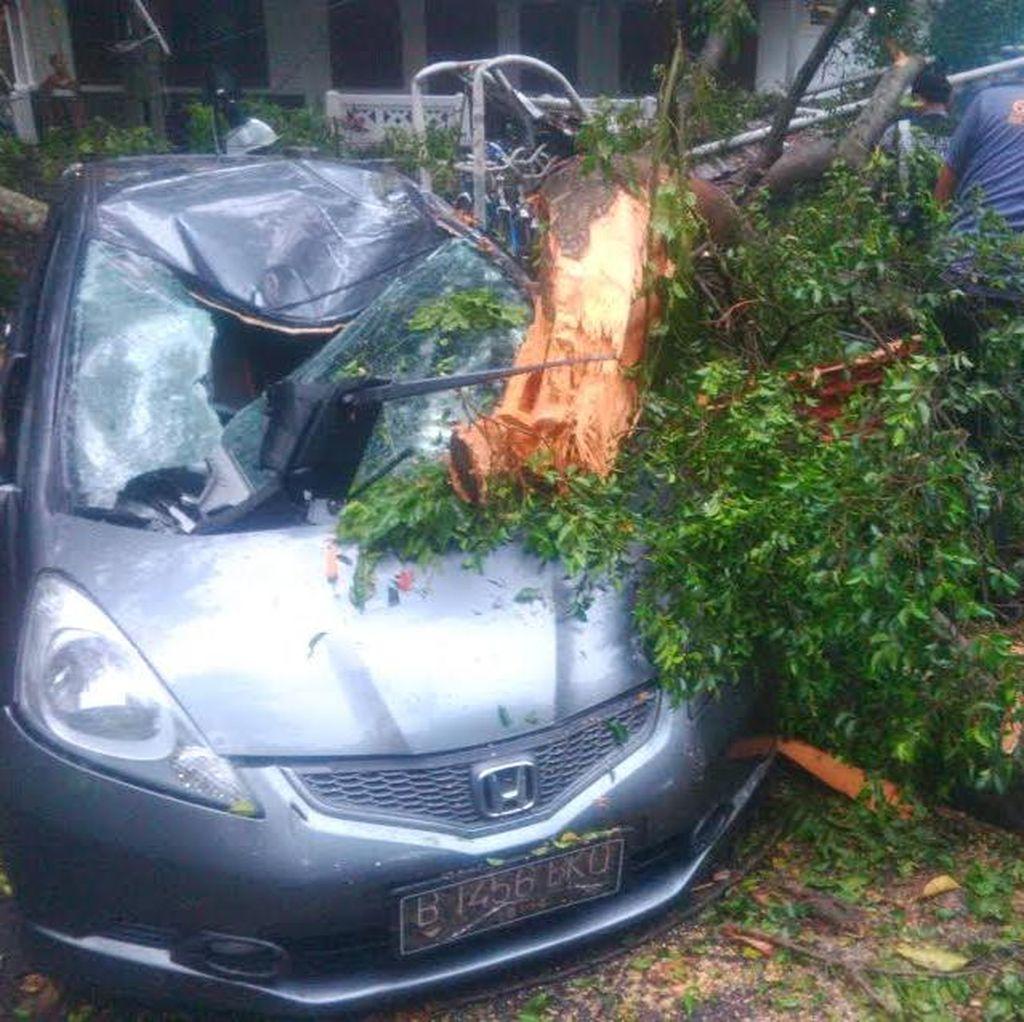 Tangis dan Sedih Mahasiswi Pemilik Mobil yang Tertimpa Pohon di Depan ITB
