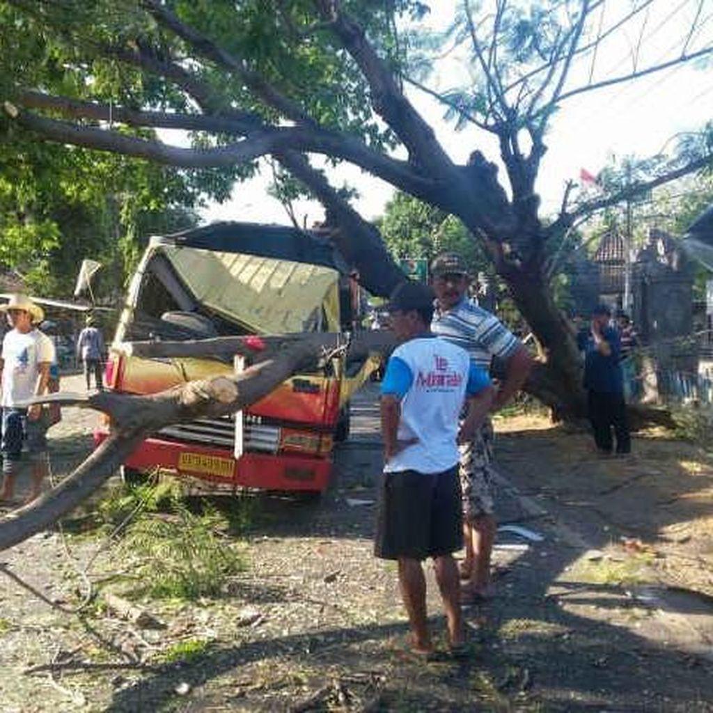 Sebuah Truk Tertimpa Pohon Tumbang, Sopir Tergencet
