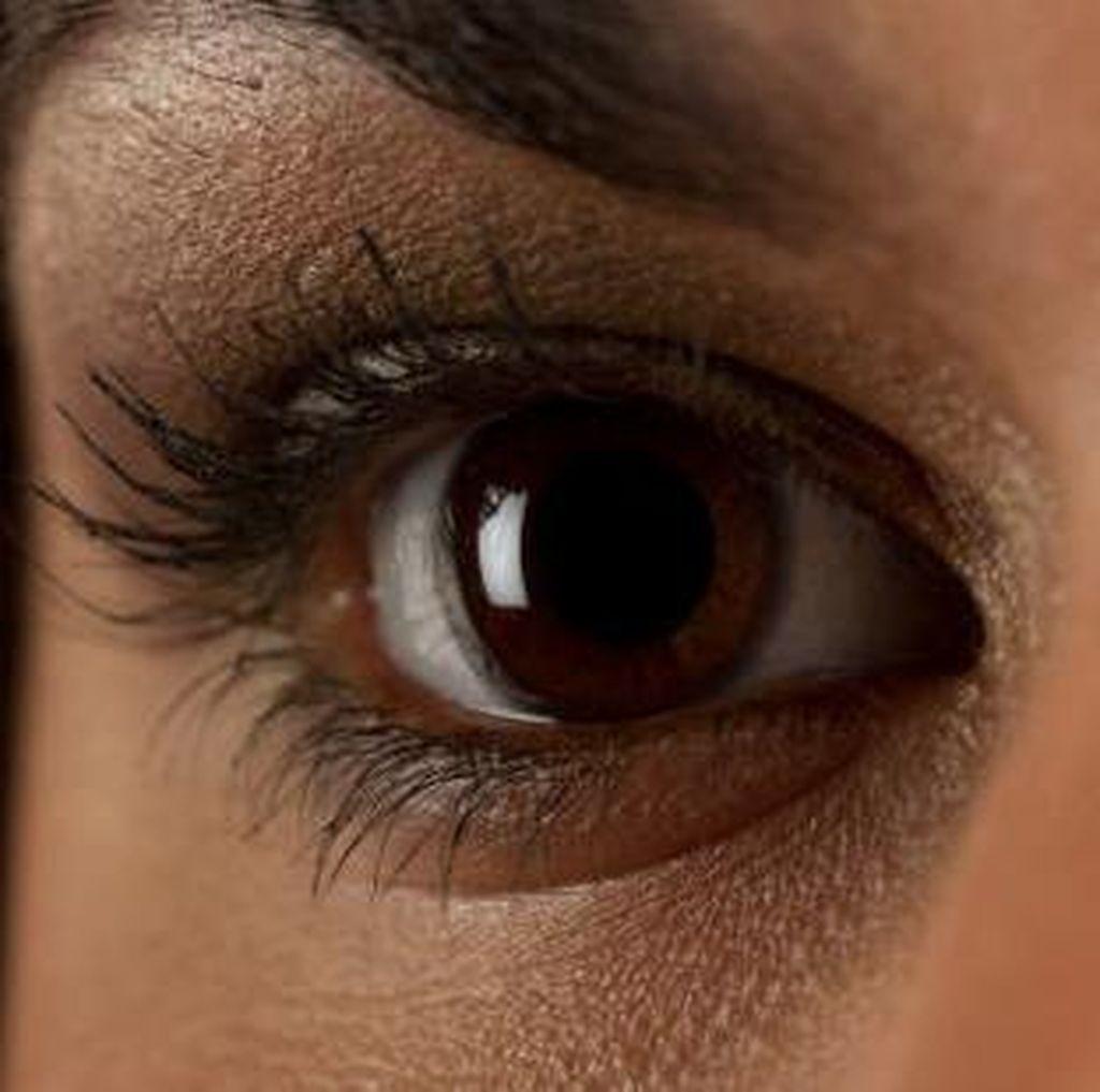 Peringati Hari Penglihatan Se-dunia, SDF Sebar 1.000 Alat Bantu Low Vision