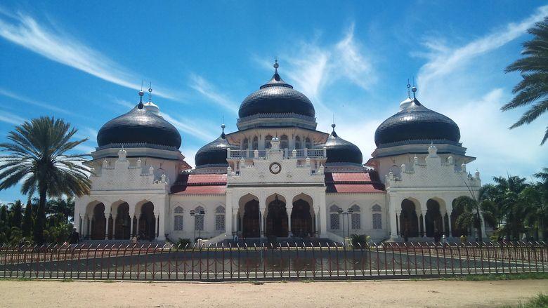 Pohon Kohler Saksi Sejarah di Masjid Baiturrahman Ditebang, Warga Aceh Protes