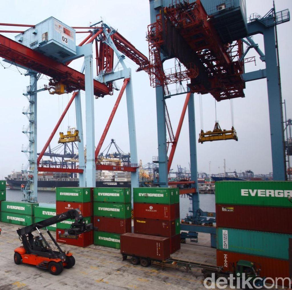 Disebut Picu Tingginya Dwell Time di Pelabuhan Perak, Ini Kata Importir