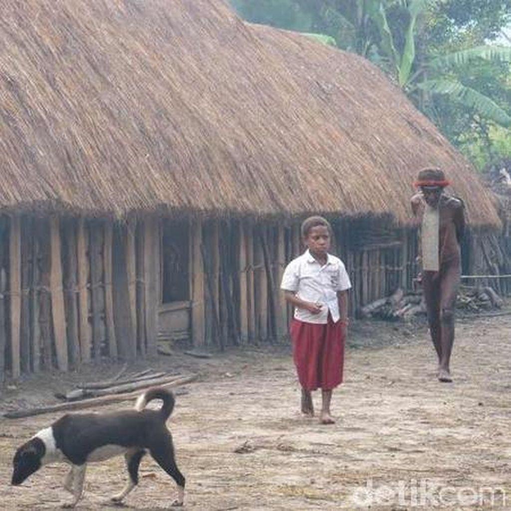 Kematian Balita di Papua Diselidiki, Uji Lab Diperkirakan Selesai Selasa Sore