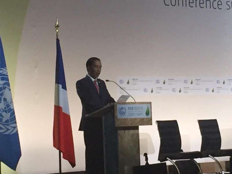 Jokowi Optimistis Negara Maju Bantu RI Perbaiki Upaya Perubahan Iklim