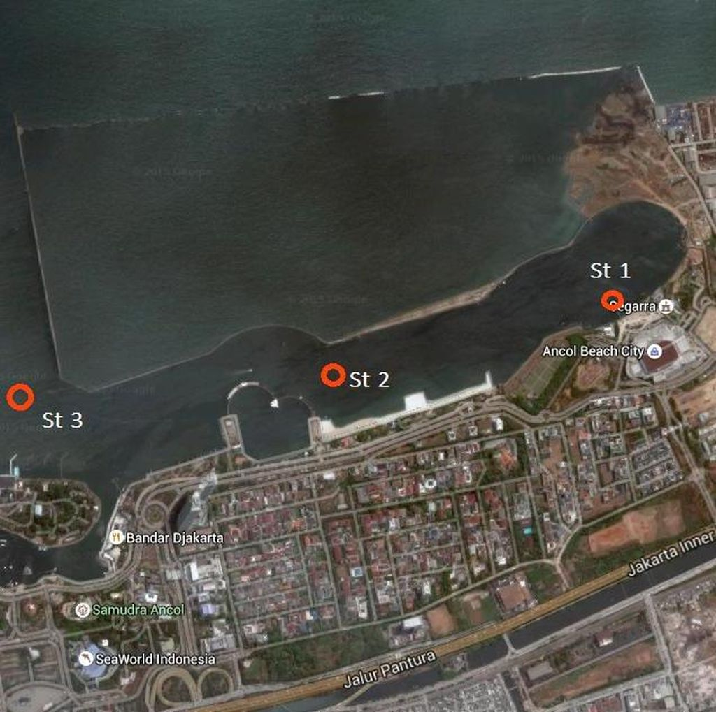 Ini Hasil Uji Lab LIPI Terkait Kasus Jutaan Ikan yang Mati di Pantai Ancol