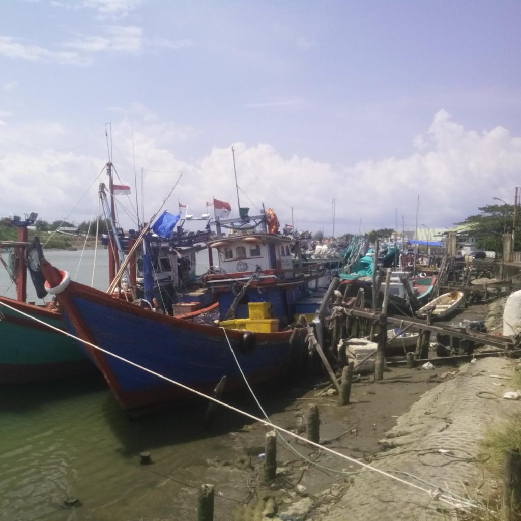 Fasilitas Banyak, Susi Ajak WNI Jadi Nelayan