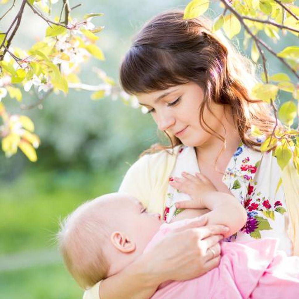 Cerita Ibu Beri Kolostrum untuk Bayinya yang Belum Bisa Menyusu dengan Benar
