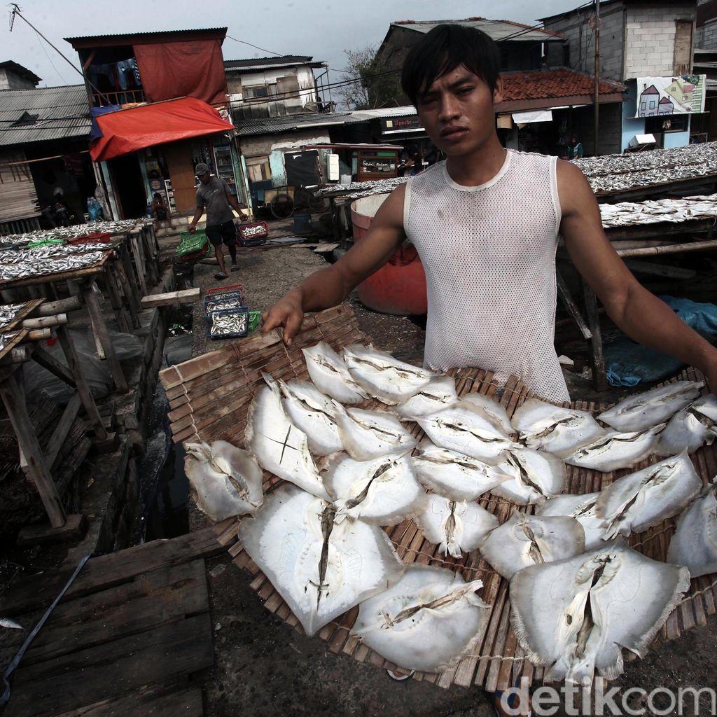 OJK: NPL di Sektor Kelautan dan Perikanan Turun Jadi 1,8%