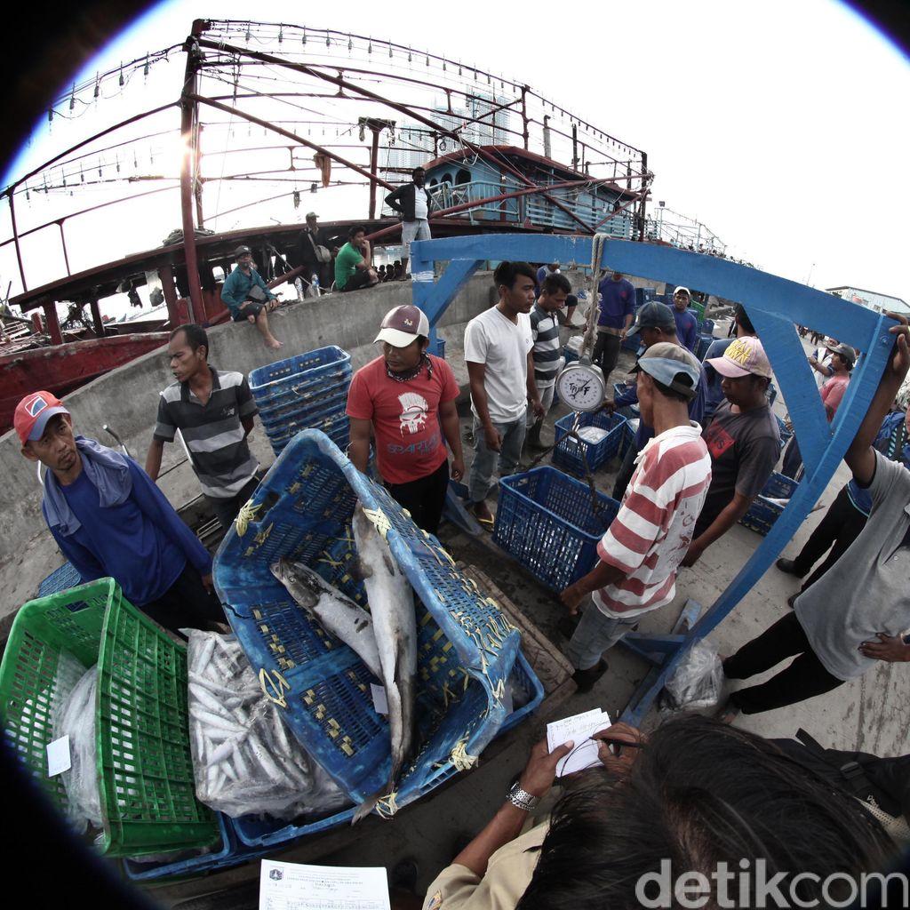 Susi Gandeng BUMN Maksimalkan Tangkapan Ikan di 15 Pulau Terluar