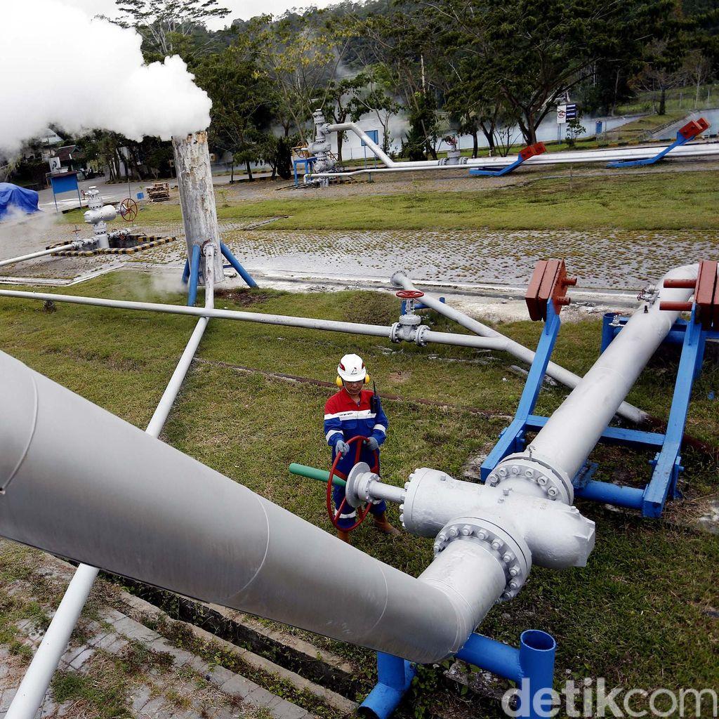 Incar Harta Karun Energi RI, Chevron Terkendala Status Hutan