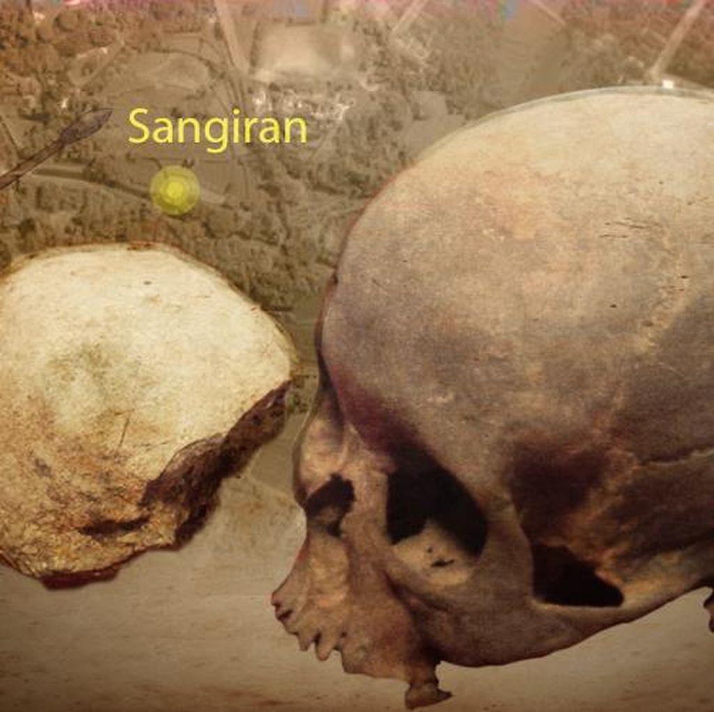 Kemdikbud: Penemuan Fosil di Sangiran Baru 30 Persen
