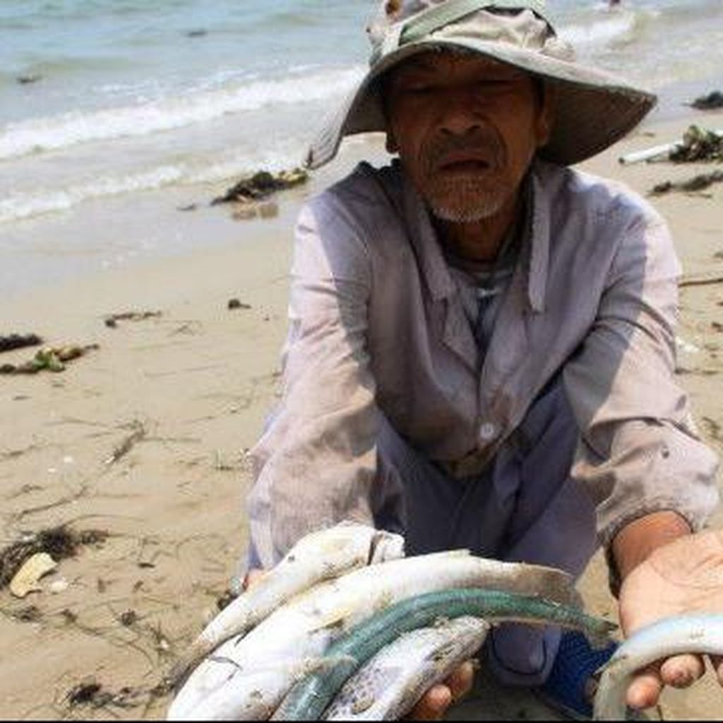 Nelayan Vietnam Protes karena Banyak Ikan Mati Misterius