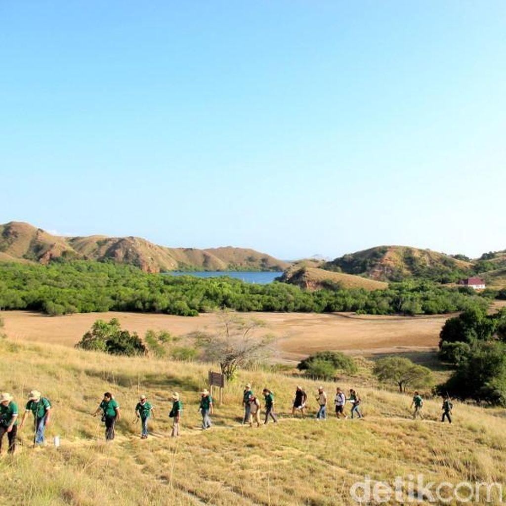 Jelajah Eksotisnya Taman Nasional Komodo di Long Weekend Ini