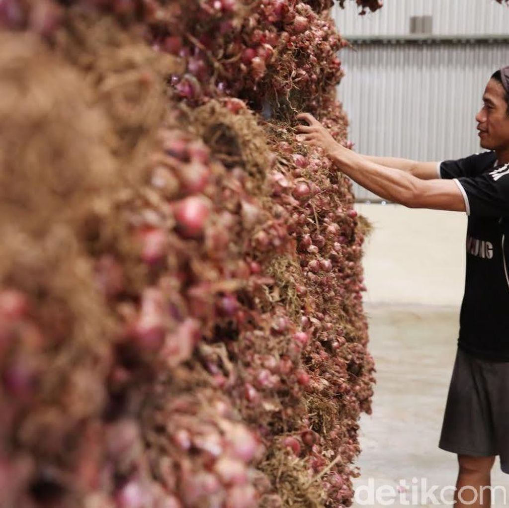 Sempat Menolak, Mentan Akhirnya Sepakati Impor Bawang Merah