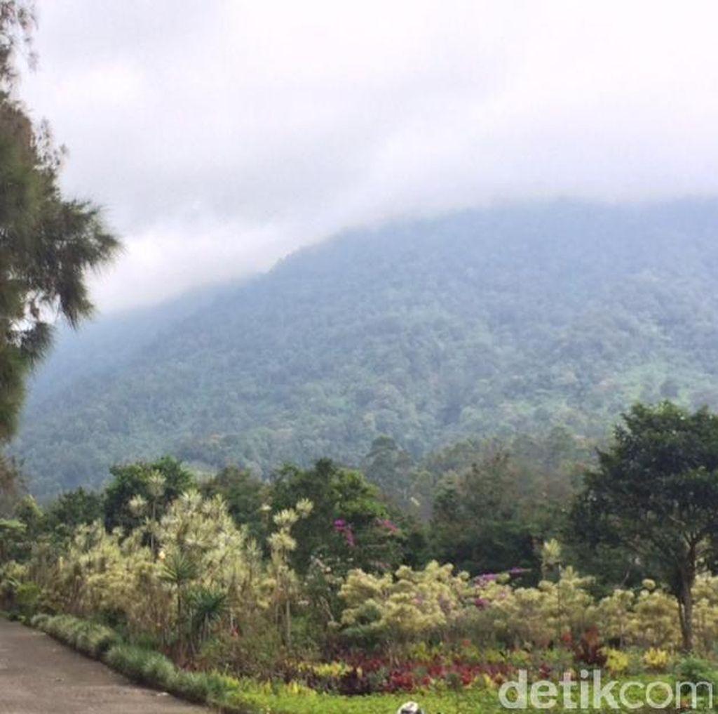 Dear Pendaki, Jangan Rusak Indahnya Pemandangan Gede Pangrango ini