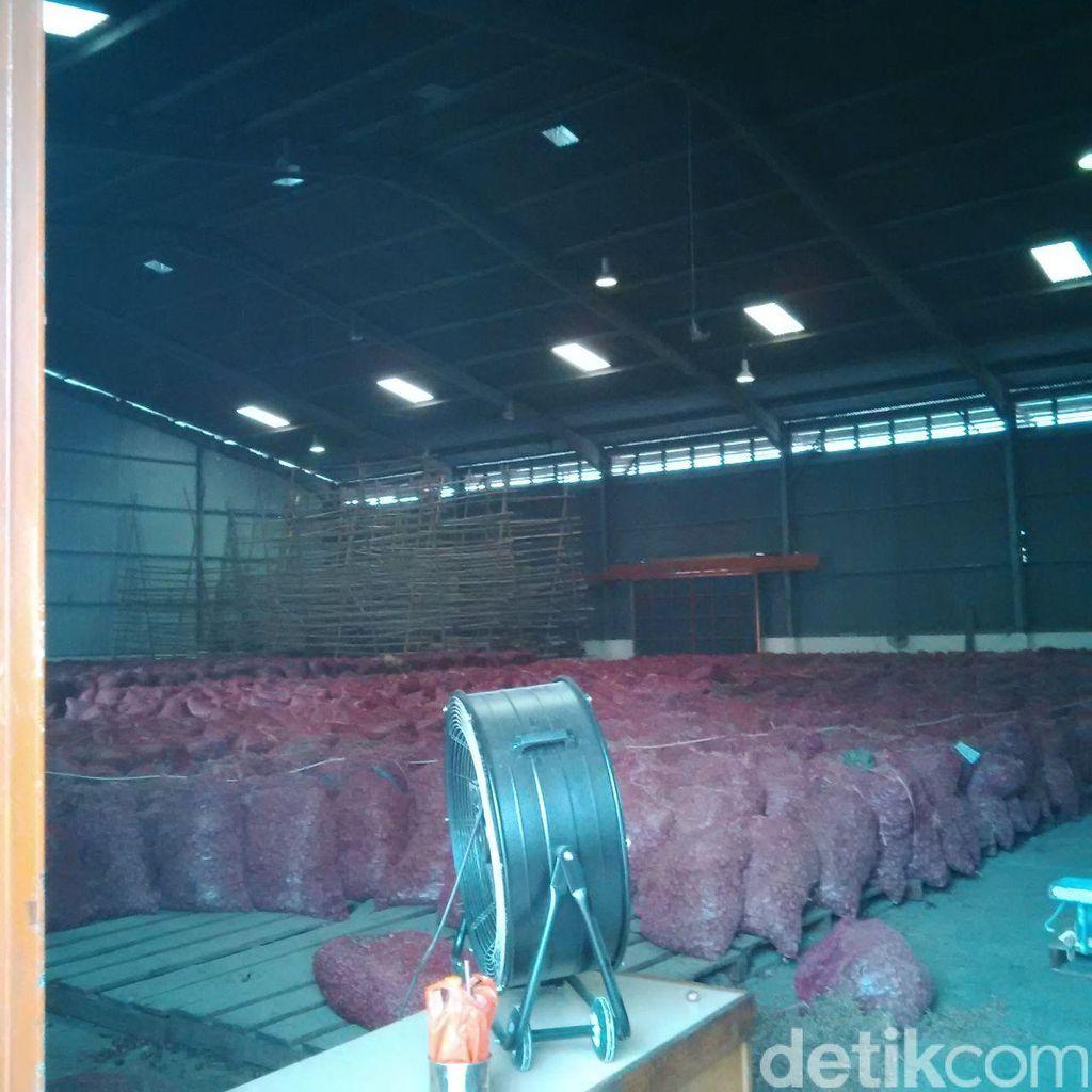 1.200 Ton Bawang Merah Bima Dikirim ke Jakarta, Ini Kata Pedagang