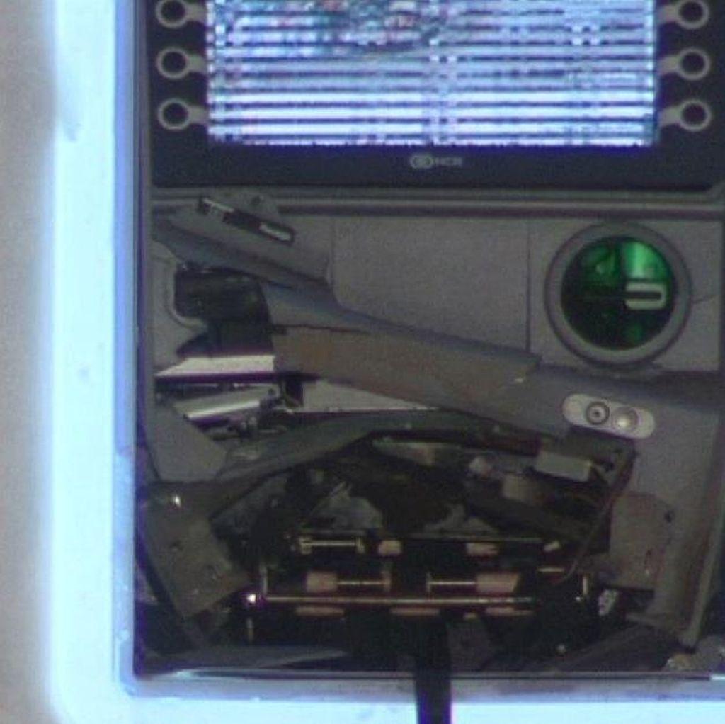 Pencuri Meledakkan ATM di Toko Suvenir, Kebun Binatang Adelaide Tutup Sementara