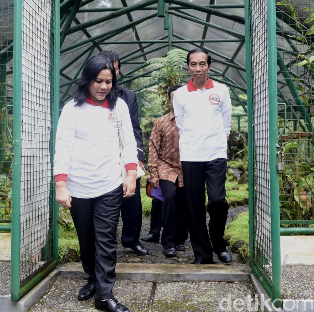 Akhir Pekan, Jokowi Keliling Kebun Raya Cibodas dan Belanja di Pasar Cipanas