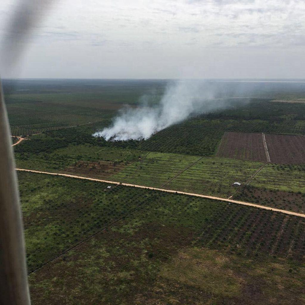 Satgas Udara Padamkan Lahan Terbakar di Kabupaten Rohil Riau