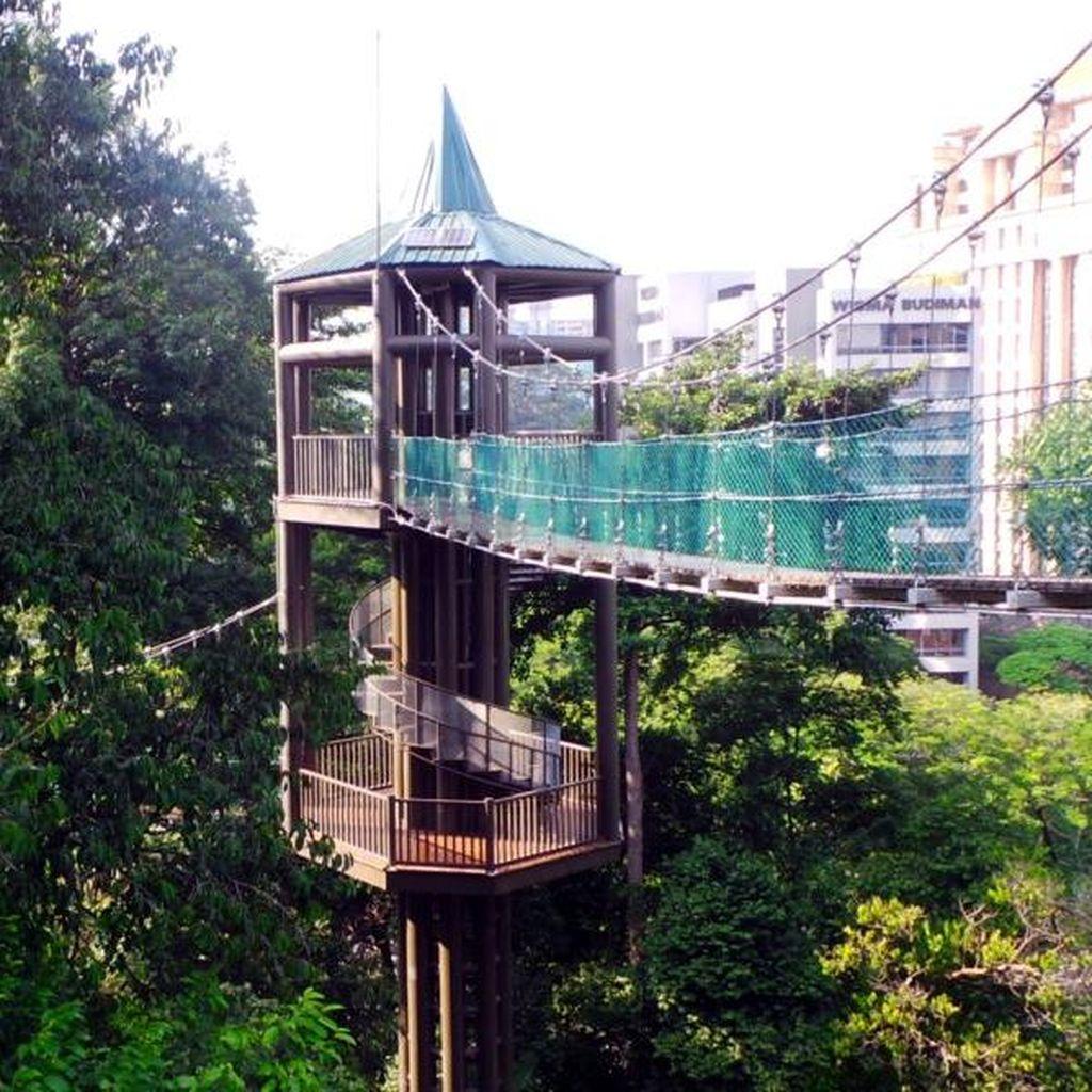 Uji Nyali Meniti Jembatan Kanopi di Jantung Kuala Lumpur
