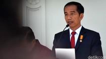 Ketemu Jokowi, Dubes Norwegia Bahas Investasi Budidaya Perikanan