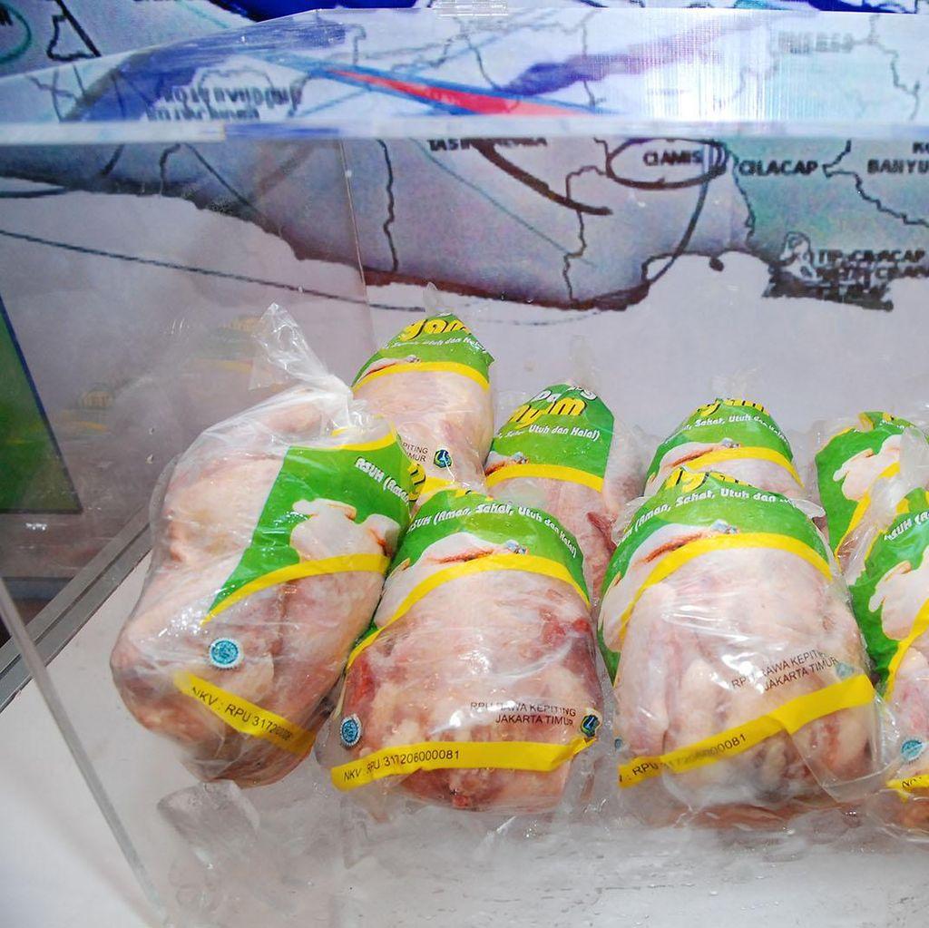 Perluas Pengetahuan Pangan, FAO Indonesia Kampanyekan Ayam Sehat