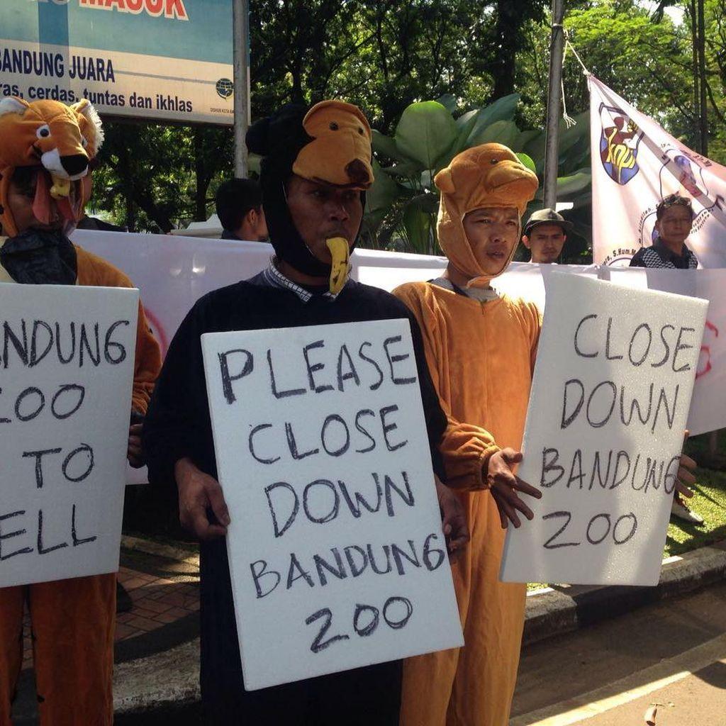 Aktivis Desak Pemkot Ambil Alih Pengelolaan Kebun Binatang Bandung