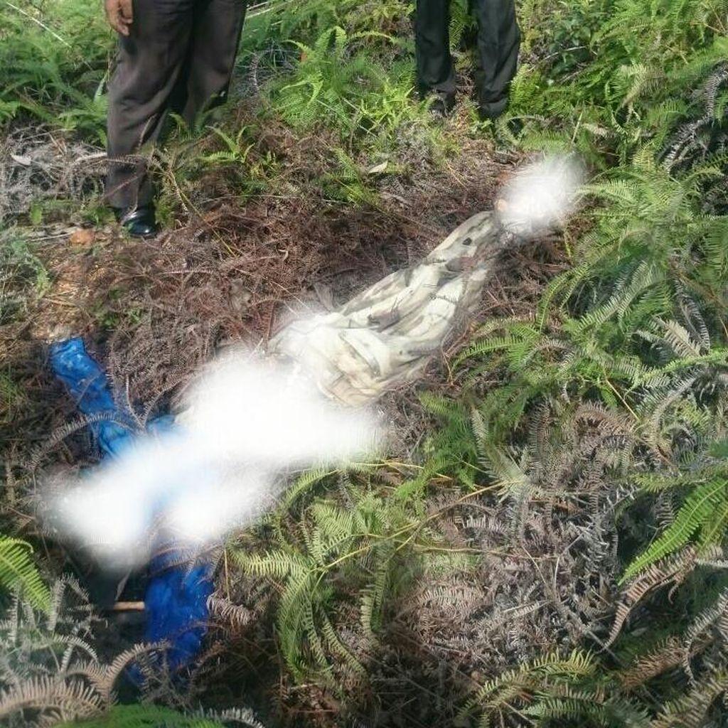 Mahasiswi di Batam yang Tewas Dibunuh Hamil 6 Bulan, Polisi Buru Pelaku
