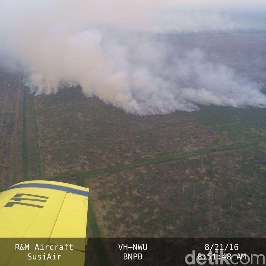 Asap di Riau Semakin Parah, Jarak Pandang di Dumai Hanya 1 Km